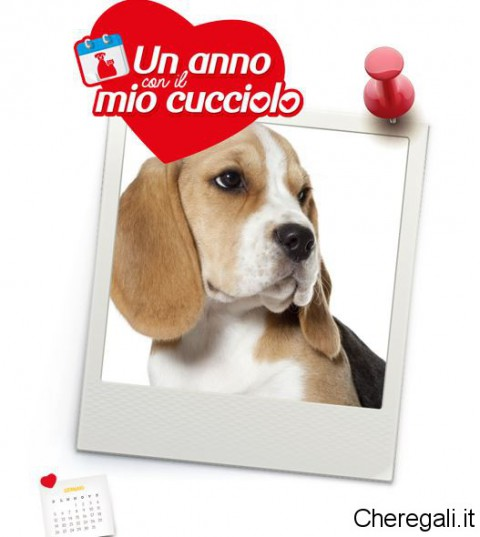 calendario-personalizzato-cane