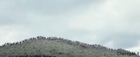 film-i-vichinghi-postepayfun