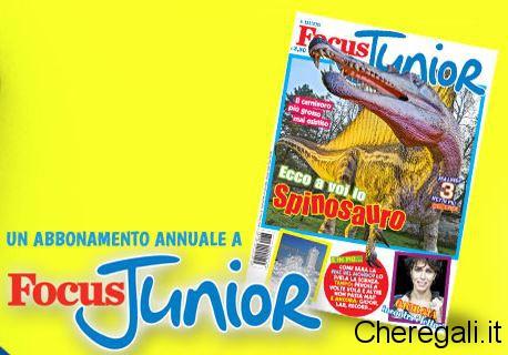 focus-junior