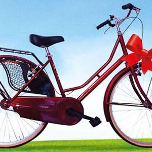 Henkel Concorso Vinci Bicicletta da Città Holand 26''