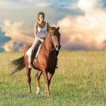 Esperienza a cavallo, degustazione e passeggiata con Sole, Vanish e Calgon